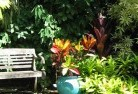 Alfred Cove Tropical landscaping 11