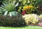 Alfred Cove Tropical landscaping 9